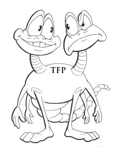 TFP zdjęcia za pozowanie